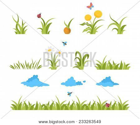 Growing Grass Template For Garden Vector. Lawn Grass, Reed And Sunflower. Flying Butterflies And Flo