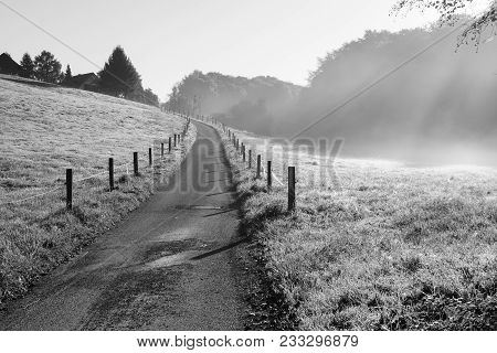 Hiking Trail Through Meadows In Morning Sunlight, Odenthal, Germany