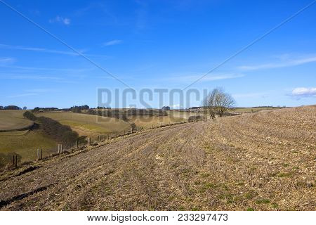 Hilltop Straw Stubble Field With Tyre Tracks Overlooking Patchwork Field Scenery With Bare Trees And