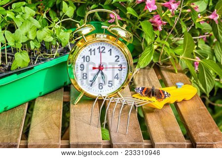 Container With The Seedlings Of Morning Glory Flowers, Alarm Clock, Tortoise Butterfly,mini-ripper O