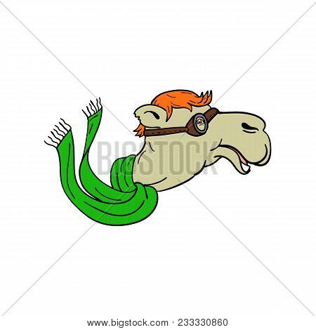Mascot Icon Illustration Of A Camel Wearing World War One Aviator Goggles And Flowing Green Scarf Vi