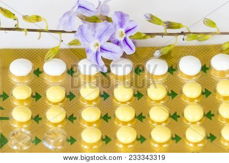 Oral Contraceptives Woman Eat Birth Control Pills With Purple Flower On Background White