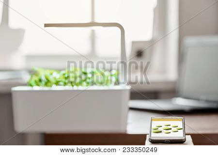 Green Potted Plants With Local Lights In The Modern Smart Lab And Remote Control On Work Place With