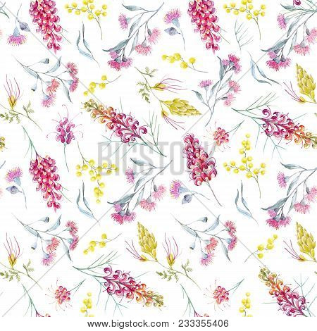 Beautiful Seamless Pattern With Watercolor Australian Tropical Grevillea Flowers