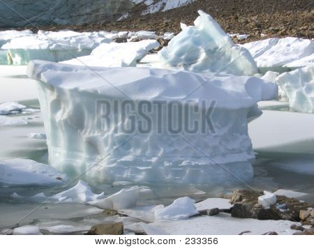 28a Glacier Piece Cavell Pond  Jasper National Park Alberta Canada