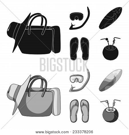 Diving, Surfing, Cocktail.summer Vacation Set Collection Icons In Black, Monochrom Style Vector Symb