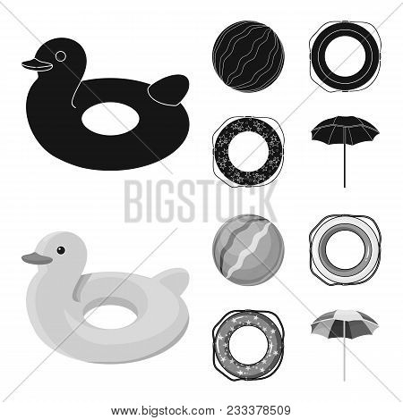 Multicolored Swimming Circle Black, Monochrom Icons In Set Collection For Design. Different Lifebuoy