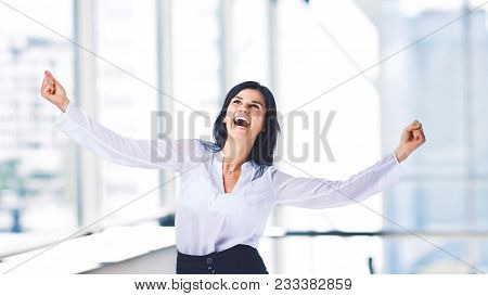 Young, Attractive, Successful Business Woman, To Enjoy Success In Office