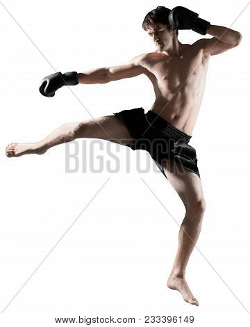 Boxer Boxing Boxing Gloves Caucasian Striking Mma Fighter