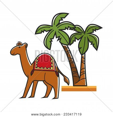Egiptian Camel With Saddle And Tall Tropical Palms. Hardy Animal With Hunch For Transportation In Em
