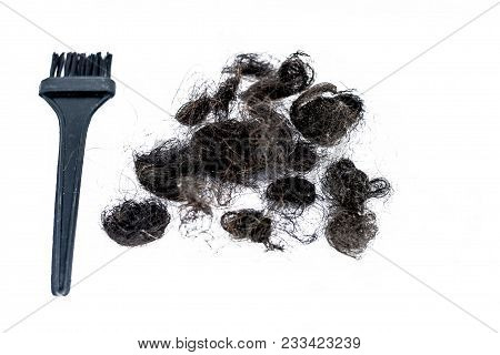 Damaged And White Female Hairs With An Black Hair Coloring Brush Concept Of Dying The Hairs Isolated