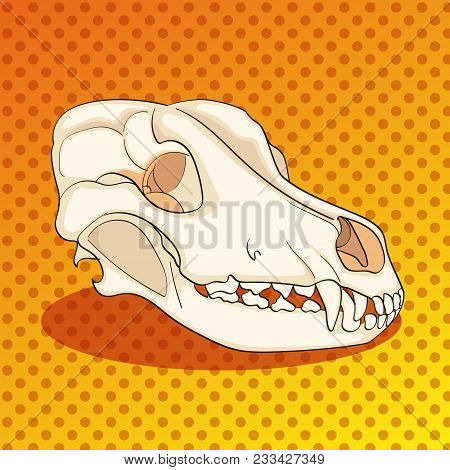 Pop Art Skull Dog Sideways. Color Background. Comic Book Style Imitation. Vector Illustration