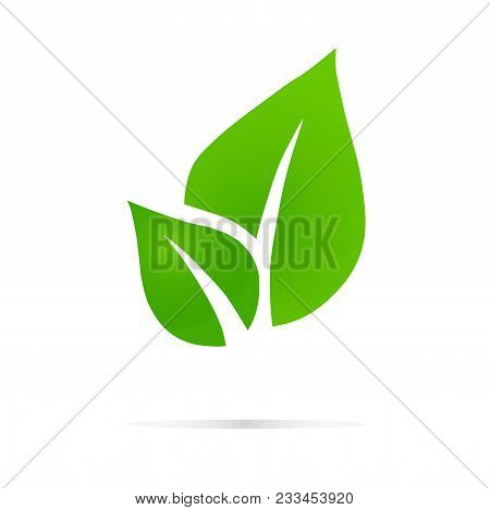 Eco Icon Green Leaf Vector Illustration Isolated. , Eco Logo, Design Template Elements