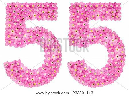 Arabic Numeral 55, Fifty Five, From Pink Forget-me-not Flowers, Isolated On White Background