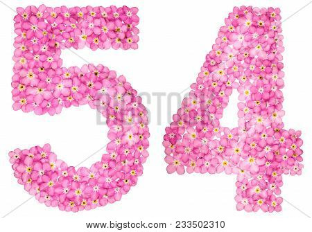 Arabic Numeral 54, Fifty Four, From Pink Forget-me-not Flowers, Isolated On White Background