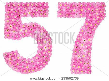 Arabic Numeral 57, Fifty Seven, From Pink Forget-me-not Flowers, Isolated On White Background