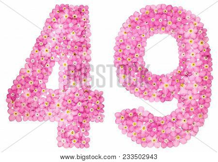 Arabic Numeral 49, Forty Nine, From Pink Forget-me-not Flowers, Isolated On White Background