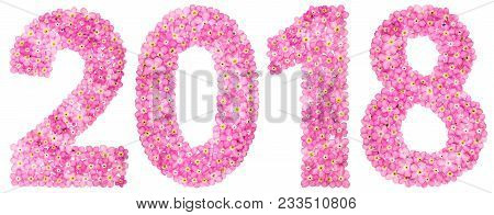 Numeral 2018 From Pink Forget-me-not Flowers, Isolated On White Background
