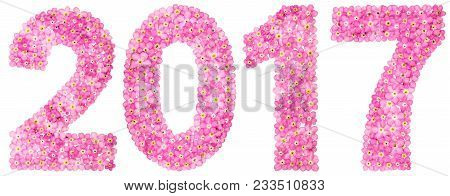 Numeral 2017 From Pink Forget-me-not Flowers, Isolated On White Background