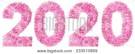 Numeral 2020 From Pink Forget-me-not Flowers, Isolated On White Background