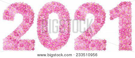 Numeral 2021 From Pink Forget-me-not Flowers, Isolated On White Background