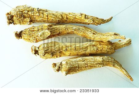 Ginseng - white background
