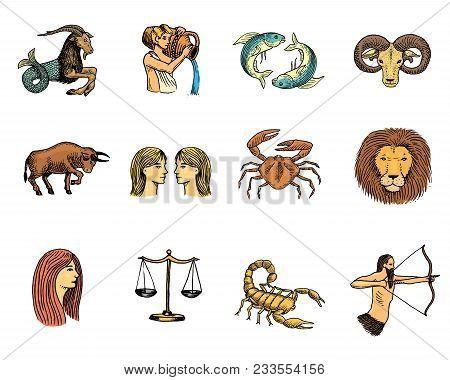 Zodiac Symbols Vector Astrology Zodiacal Signs And Astrological Calendar In Horoscope Aquarius Scorp