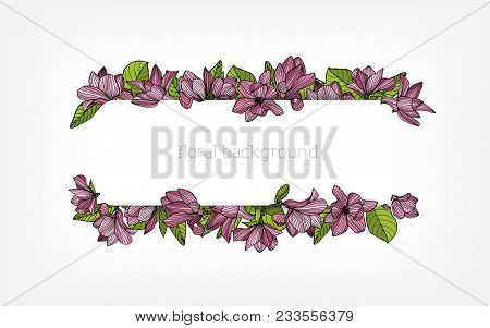 Horizontal Background, Border Or Frame Decorated With Beautiful Pink Blooming Magnolia Flowers And G