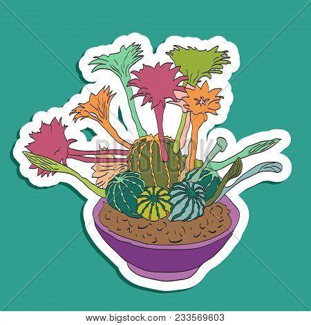 Fun Patch Cactus. Print Pin, Badge, Sticker, Collection. Cactus Vector Illustration. Cute Cartoon Ca