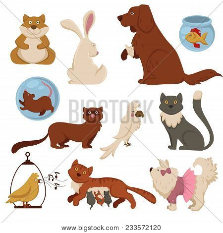 Pets Cartoon Icons For Animal Zoo Shop Or Veterinarian Clinic Design Template. Vector Isolated Flat