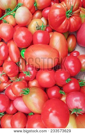Village Market Colorful Tomatoes. Group Of Mix Tomatoes