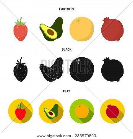 Strawberry, Berry, Avocado, Orange, Pomegranate.fruits Set Collection Icons In Cartoon, Black, Flat