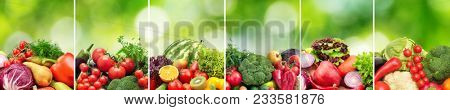 Collage fruits and vegetables divided vertical lines on green natural blurred background.