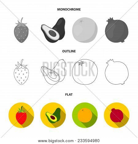 Melon, Plum, Pineapple, Lemon.fruits Set Collection Icons In Flat, Outline, Monochrome Style Vector