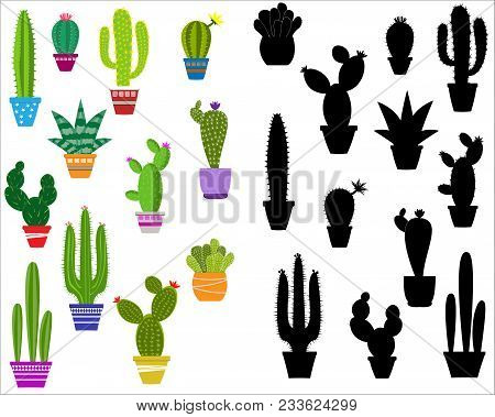 Vector Home Cactus Icons. Cactus Icons In A Flat Style On A White Background. Home Plants Cactus In