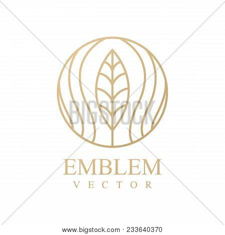 Nature Logo. Floral Logo. Flower Icon. Floral Emblem. Cosmetics, Spa, Beauty Salon, Decoration, Bout