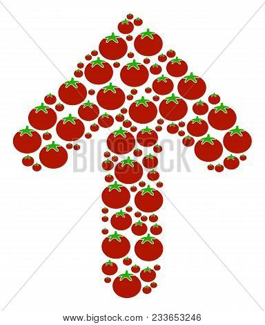 Arrow Direction Collage Of Tomato In Various Sizes. Vector Tomato Vegetable Elements Are Composed In