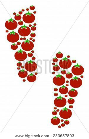 Human Footprints Composition Of Tomatoes In Various Sizes. Vector Tomato Symbols Are Grouped Into Hu