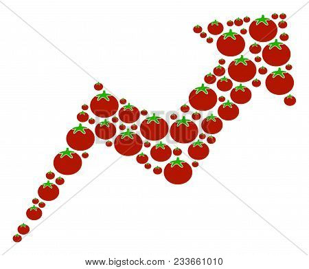 Trend Collage Of Tomato Vegetables In Variable Sizes. Vector Tomato Vegetable Items Are Combined Int