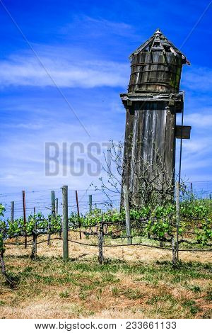 Old Wooden Water Tower In Vineyards Near Alexander Valley, California