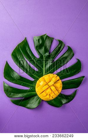 Creative Layout Made Of Summer Tropical Fruits Mango And Tropical Leaves On Purple Background. Flat