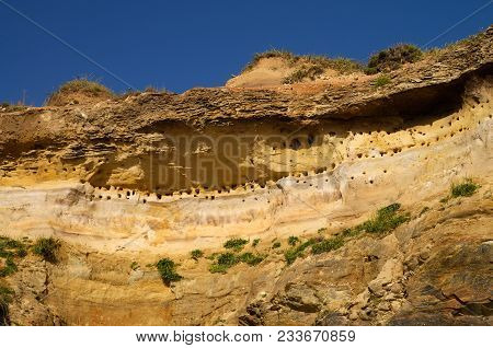 Perspective From Below Of A High Sandstone Cliff By The Beach Packed With Holes That Are The Swallow