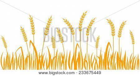 Ears Of Wheat Horizontal Border Seamless Pattern Vector Illustration