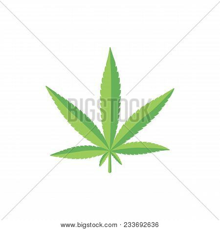 Fresh Marijuana, Hemp, Cannabis Leaf On Two Shades Of Green, Flat Style Vector Illustration Isolated