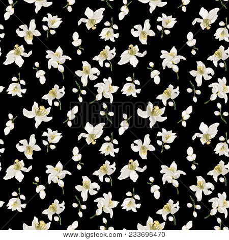 Citrus Flowers Seamless Pattern With Flowers And Buds Of Citrus Trees Such As Mandarin, Lemon, Orang
