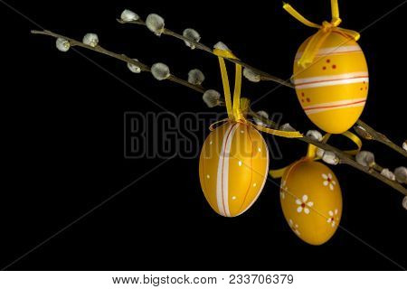 Various Patterned Eggs Suspended On A Catkins Branch In Front Of A Black Background.