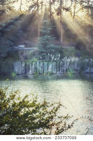 Mesmerising Countryside Landscape: Franklin Canyon Lake Filled With Golden Sunlight, Beverly Hills,