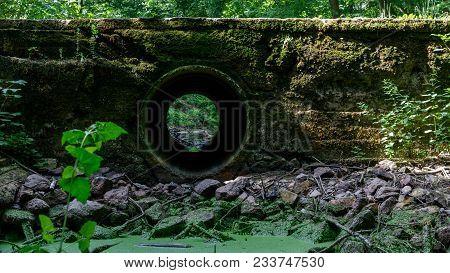 Alte Brücke Im Wald. Überwuchert Und Sonnenbeschienen.