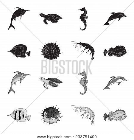 Shrimp, Fish, Hedgehog And Other Species.sea Animals Set Collection Icons In Black, Monochrome Style