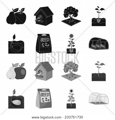 Company, Ecology, And Other  Icon In Black, Monochrome Style. Husks, Fines, Garden Icons In Set Coll